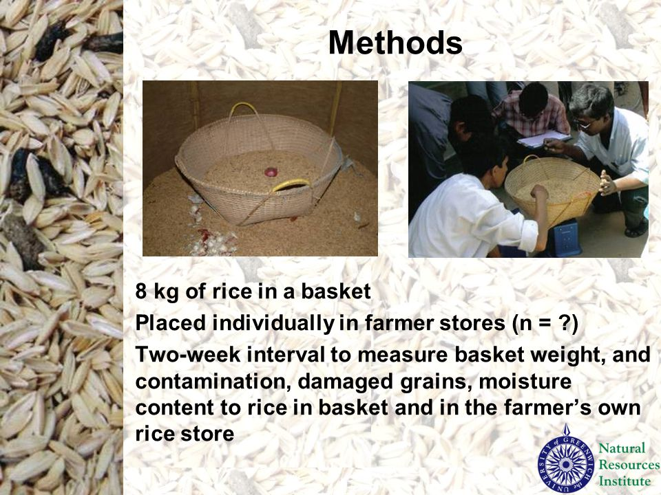 Methods 8 kg of rice in a basket Placed individually in farmer stores (n = ?) Two-week interval to measure basket weight, and contamination, damaged grains, moisture content to rice in basket and in the farmer's own rice store