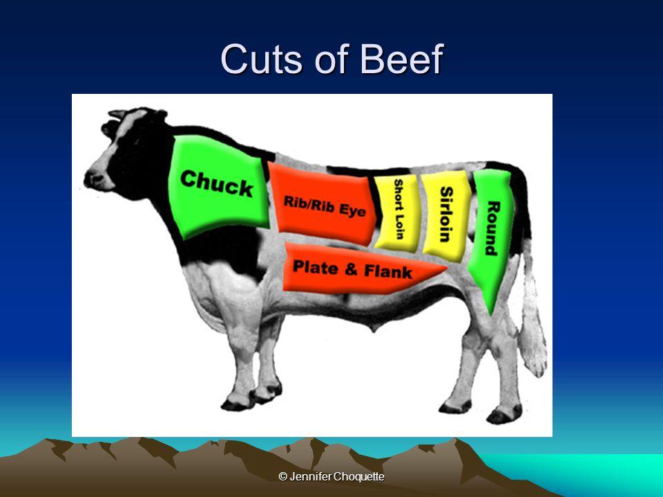 Cuts of Beef © Jennifer Choquette