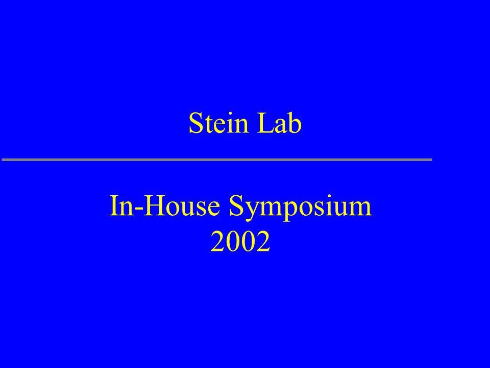 Stein Lab In-House Symposium 2002