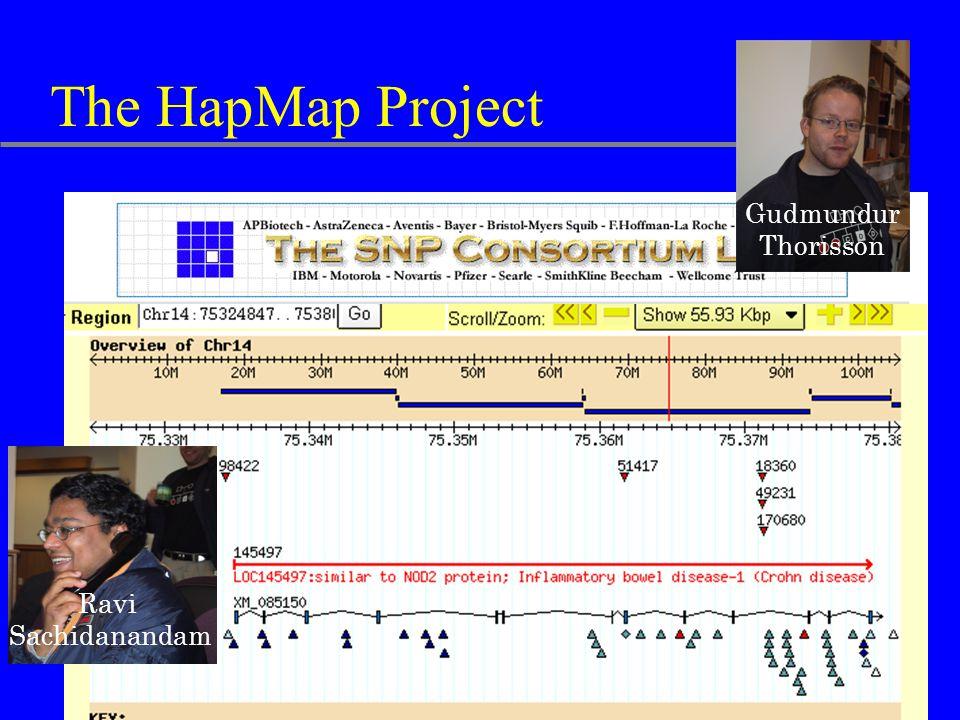 The HapMap Project Gudmundur Thorisson Ravi Sachidanandam
