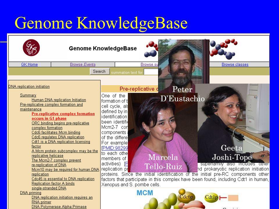 Genome KnowledgeBase Geeta Joshi-Tope Marcela Tello-Ruiz Peter D'Eustachio