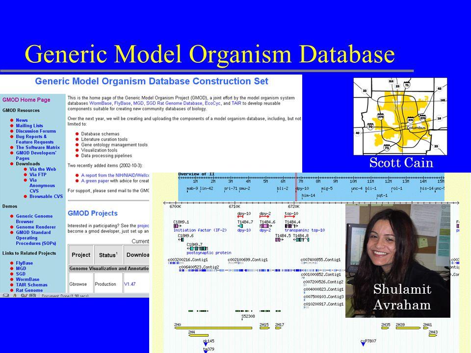 Generic Model Organism Database Scott Cain Shulamit Avraham