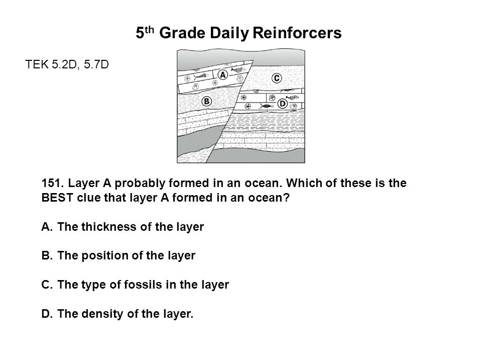 5 th Grade Daily Reinforcers TEK 5.2D, 5.7D 151. Layer A probably formed in an ocean.
