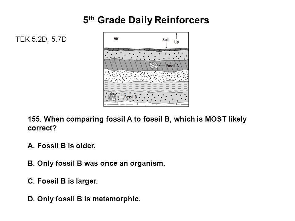 5 th Grade Daily Reinforcers TEK 5.2D, 5.7D 155.