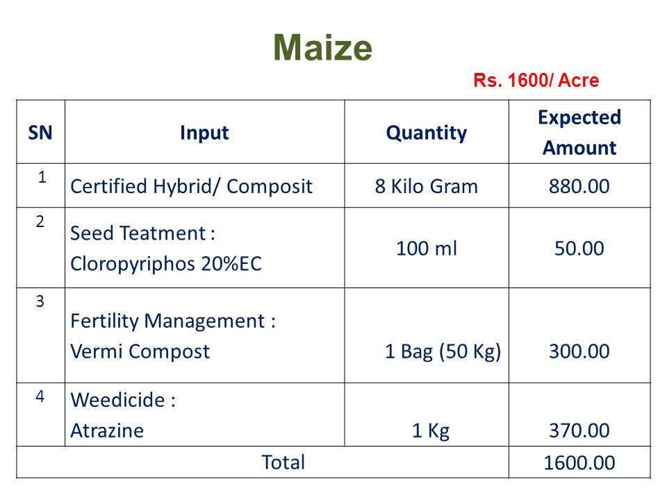 Maize Rs.
