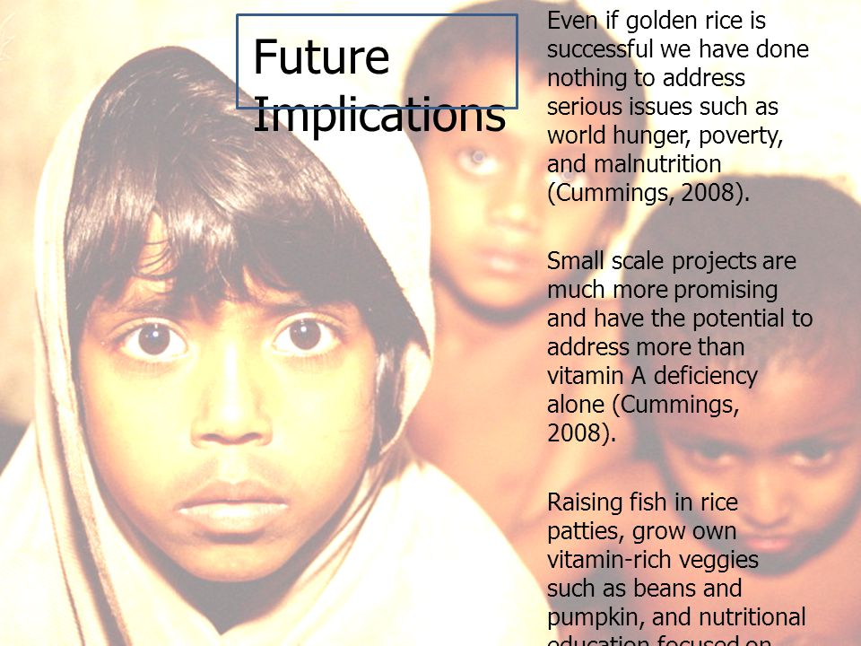 Future Implications Even if golden rice is successful we have done nothing to address serious issues such as world hunger, poverty, and malnutrition (Cummings, 2008).