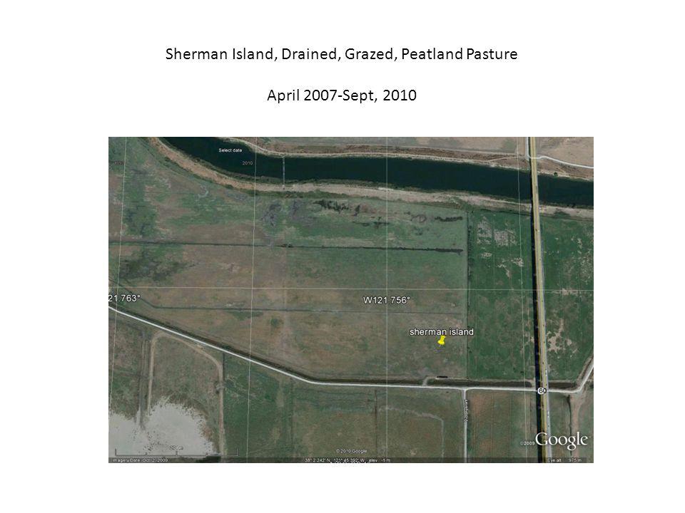Sherman Island, Drained, Grazed, Peatland Pasture April 2007-Sept, 2010
