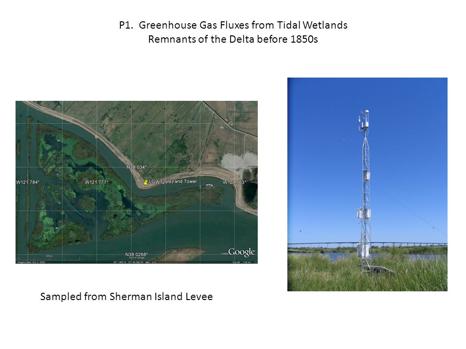Methane Emission and CO 2 Exchange from Tidal Wetland, Spring 2010