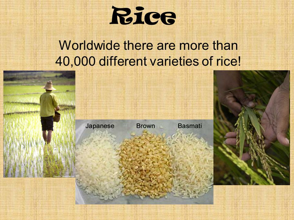 Rice Worldwide there are more than 40,000 different varieties of rice!