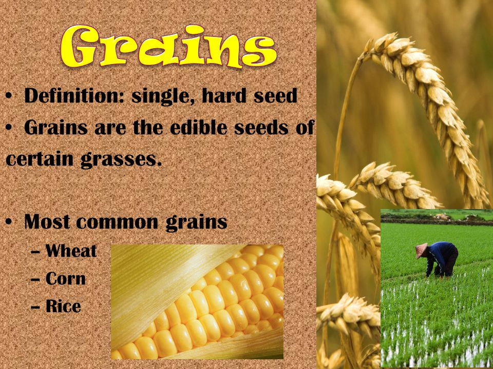 Definition: single, hard seed Grains are the edible seeds of certain grasses.
