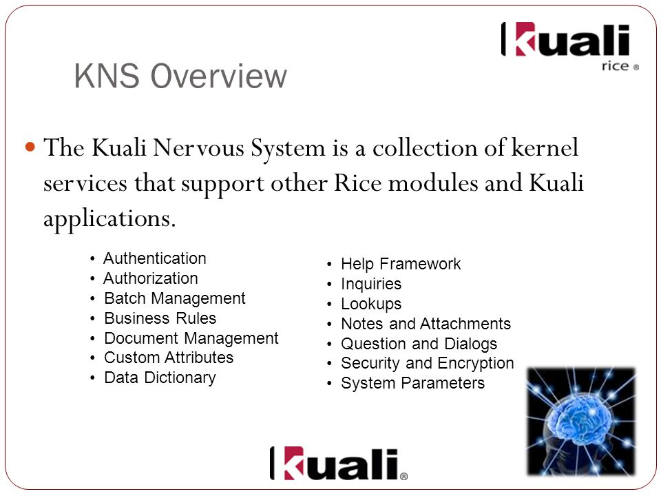 KNS Overview The Kuali Nervous System is a collection of kernel services that support other Rice modules and Kuali applications.