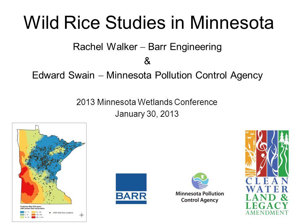 Wild Rice Studies in Minnesota Rachel Walker  Barr Engineering & Edward Swain  Minnesota Pollution Control Agency 2013 Minnesota Wetlands Conference January 30, 2013