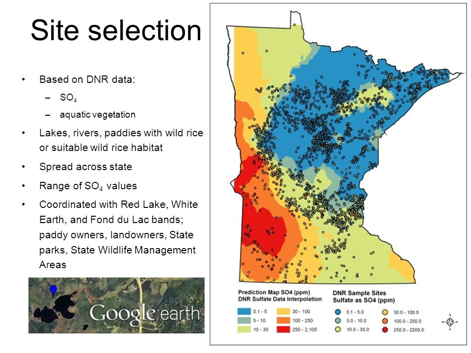 Site selection Based on DNR data: –SO 4 –aquatic vegetation Lakes, rivers, paddies with wild rice or suitable wild rice habitat Spread across state Range of SO 4 values Coordinated with Red Lake, White Earth, and Fond du Lac bands; paddy owners, landowners, State parks, State Wildlife Management Areas
