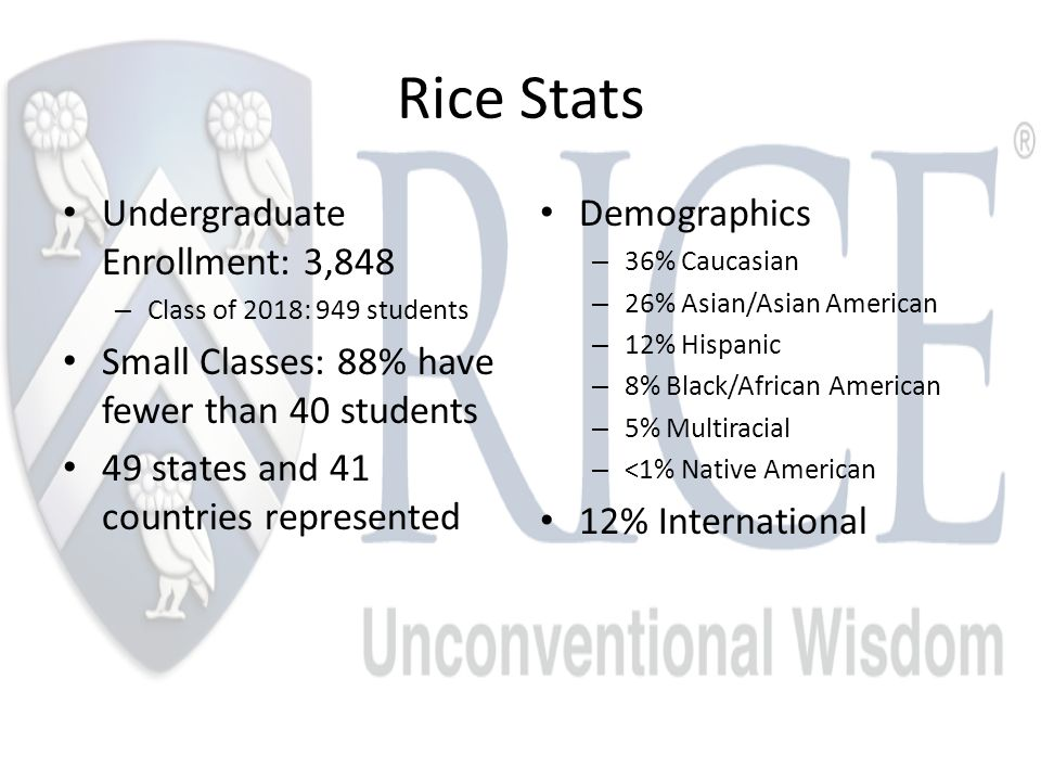 Rice Stats Undergraduate Enrollment: 3,848 – Class of 2018: 949 students Small Classes: 88% have fewer than 40 students 49 states and 41 countries represented Demographics – 36% Caucasian – 26% Asian/Asian American – 12% Hispanic – 8% Black/African American – 5% Multiracial – <1% Native American 12% International
