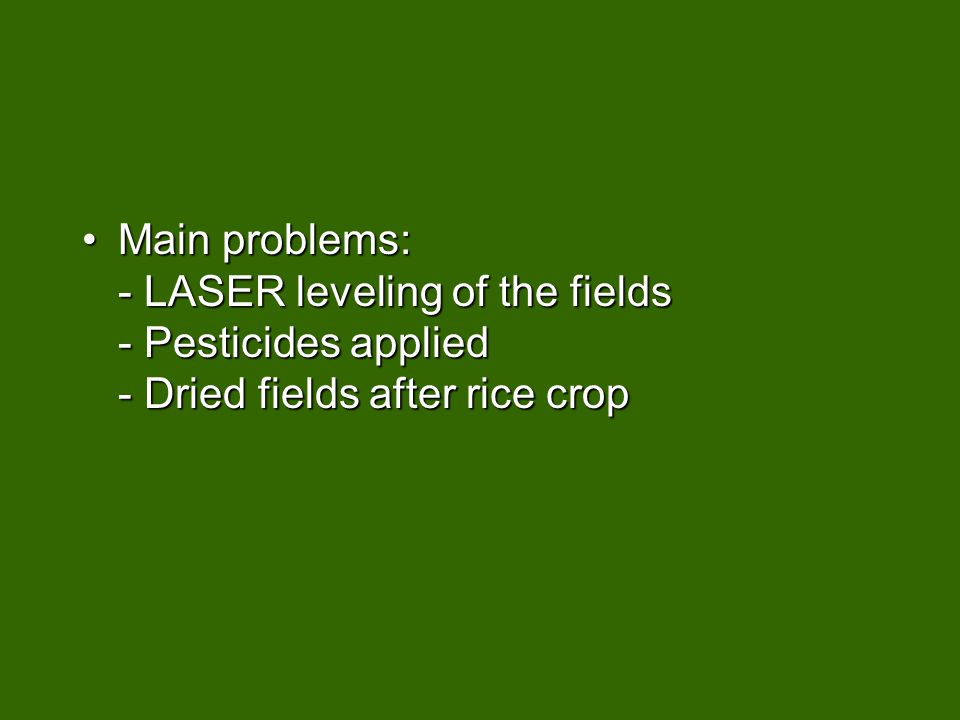 Main problems: - LASER leveling of the fields - Pesticides applied - Dried fields after rice cropMain problems: - LASER leveling of the fields - Pesticides applied - Dried fields after rice crop