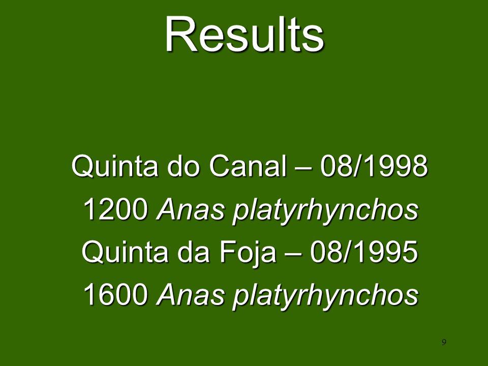 9 Results Quinta do Canal – 08/1998 1200 Anas platyrhynchos Quinta da Foja – 08/1995 1600 Anas platyrhynchos