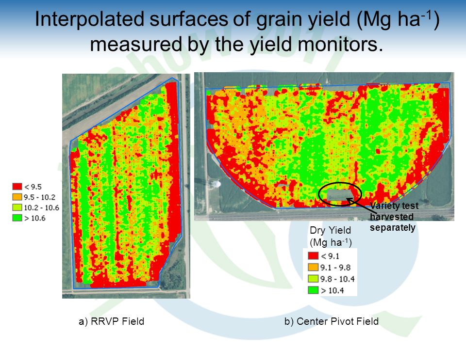 Interpolated surfaces of grain yield (Mg ha -1 ) measured by the yield monitors.