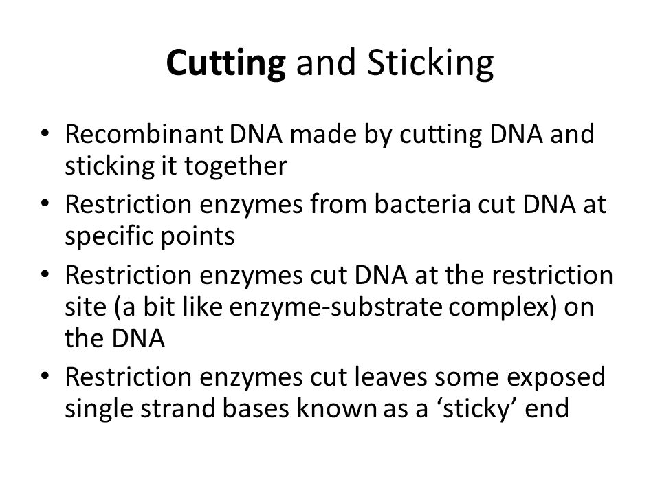 Cutting and Sticking Recombinant DNA made by cutting DNA and sticking it together Restriction enzymes from bacteria cut DNA at specific points Restric