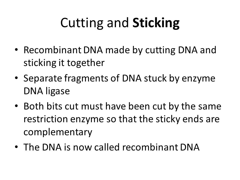 Cutting and Sticking Recombinant DNA made by cutting DNA and sticking it together Separate fragments of DNA stuck by enzyme DNA ligase Both bits cut must have been cut by the same restriction enzyme so that the sticky ends are complementary The DNA is now called recombinant DNA