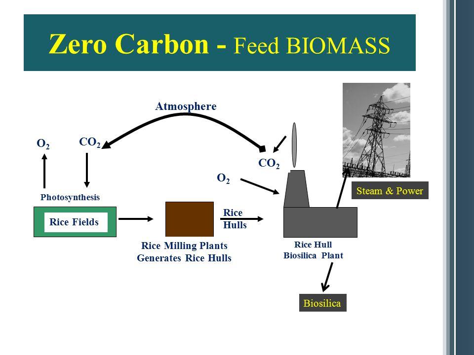 7 Rice Hull Properties HHV Dry Basis 16.2 MJ/KG [6,965 BTU/LB] Moisture, W%9.7% Volatile, W%66% Carbon, W% MF40.2% Ash, W%18.2% Ash Composition (%) SiO 2 95.00 Al 2 O 3 0.41 Fe 2 O 3 0.25 CaO 0.75 MgO 0.43 K 2 O 2.20