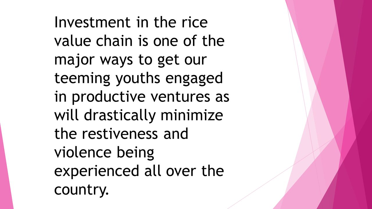 Investment in the rice value chain is one of the major ways to get our teeming youths engaged in productive ventures as will drastically minimize the restiveness and violence being experienced all over the country.