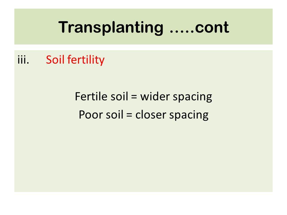 Transplanting …..cont iii.Soil fertility Fertile soil = wider spacing Poor soil = closer spacing