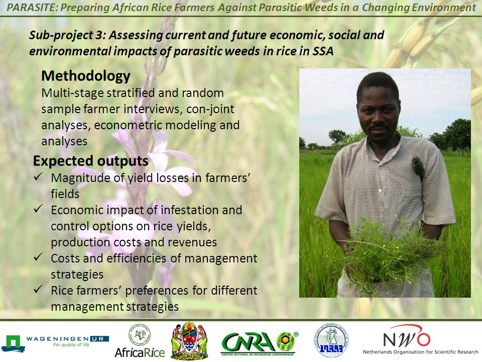 PARASITE: Preparing African Rice Farmers Against Parasitic Weeds in a Changing Environment Expected outputs Magnitude of yield losses in farmers' fields Economic impact of infestation and control options on rice yields, production costs and revenues Costs and efficiencies of management strategies Rice farmers' preferences for different management strategies Methodology Multi-stage stratified and random sample farmer interviews, con-joint analyses, econometric modeling and analyses Sub-project 3: Assessing current and future economic, social and environmental impacts of parasitic weeds in rice in SSA