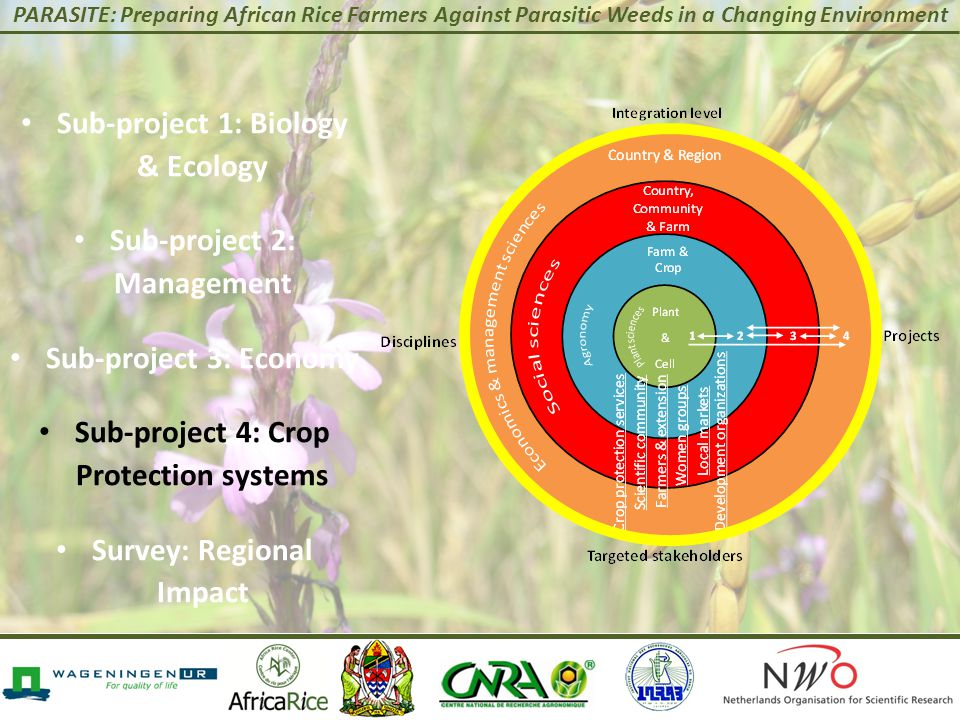 PARASITE: Preparing African Rice Farmers Against Parasitic Weeds in a Changing Environment Sub-project 1: Biology & Ecology Sub-project 2: Management Sub-project 3: Economy Sub-project 4: Crop Protection systems Survey: Regional Impact