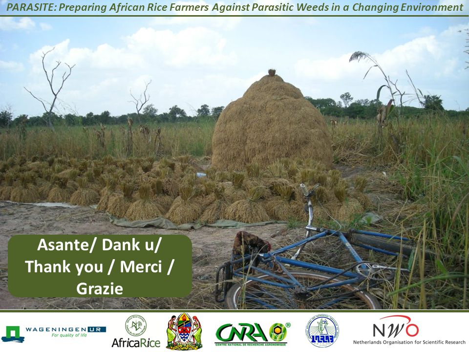 PARASITE: Preparing African Rice Farmers Against Parasitic Weeds in a Changing Environment Asante/ Dank u/ Thank you / Merci / Grazie