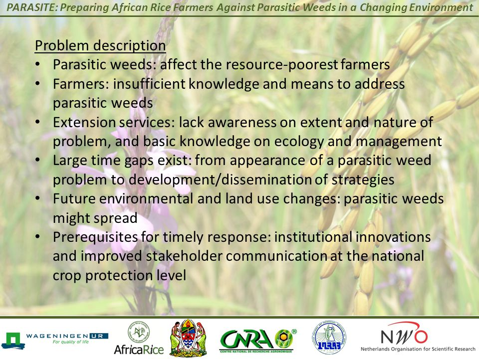 PARASITE: Preparing African Rice Farmers Against Parasitic Weeds in a Changing Environment Problem description Parasitic weeds: affect the resource-po