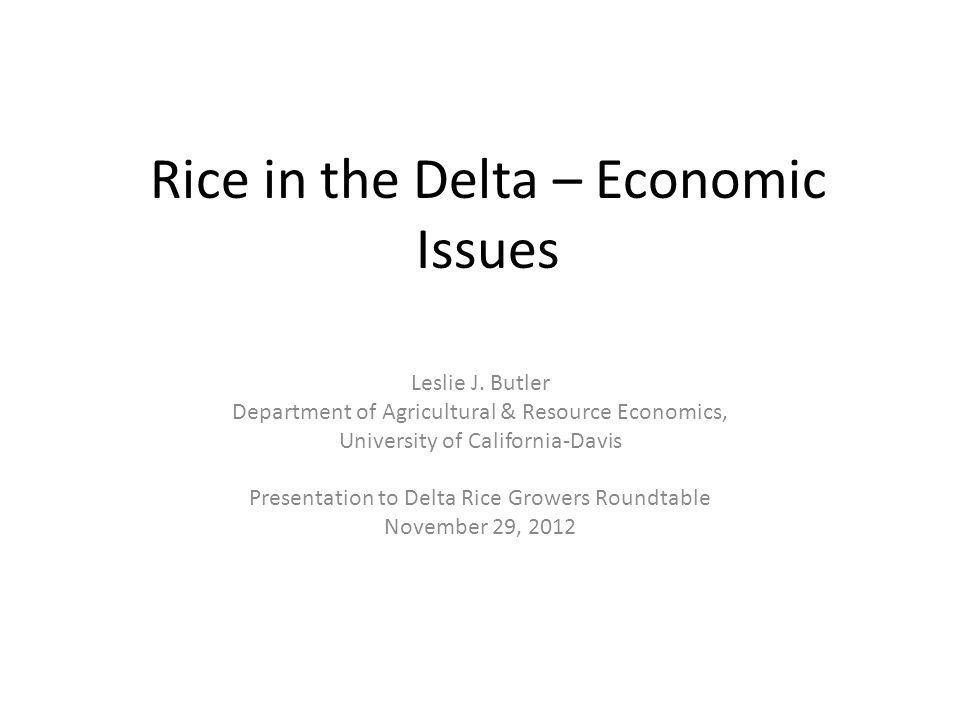Two Major Economic Issues 1.Economic feasibility of converting commonly (currently) grown Delta crops to rice (and wetlands), and associated issues.