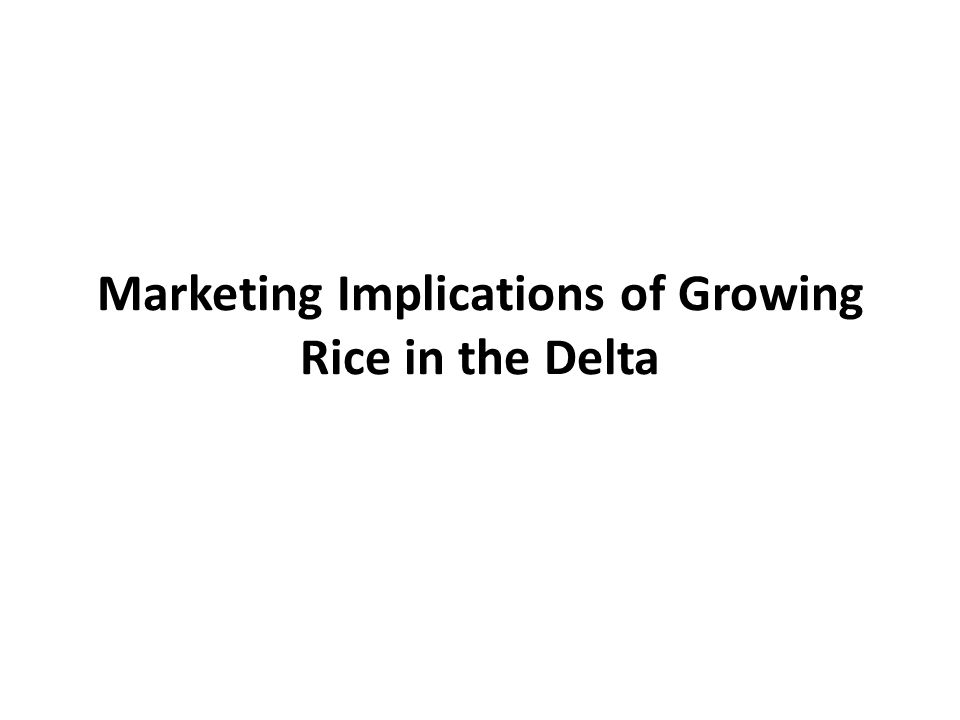 Marketing Implications of Growing Rice in the Delta