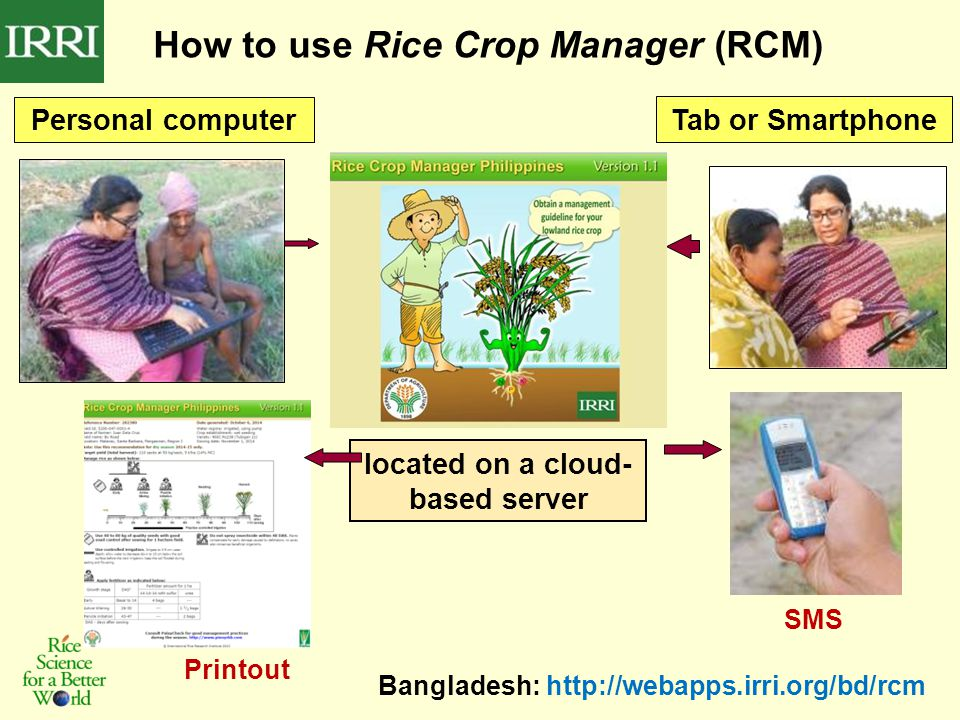 How to use Rice Crop Manager (RCM) Personal computer Tab or Smartphone Bangladesh: http://webapps.irri.org/bd/rcm located on a cloud- based server SMS Printout