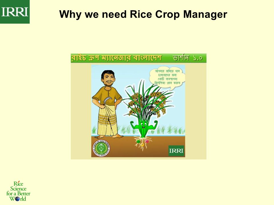 Why we need Rice Crop Manager