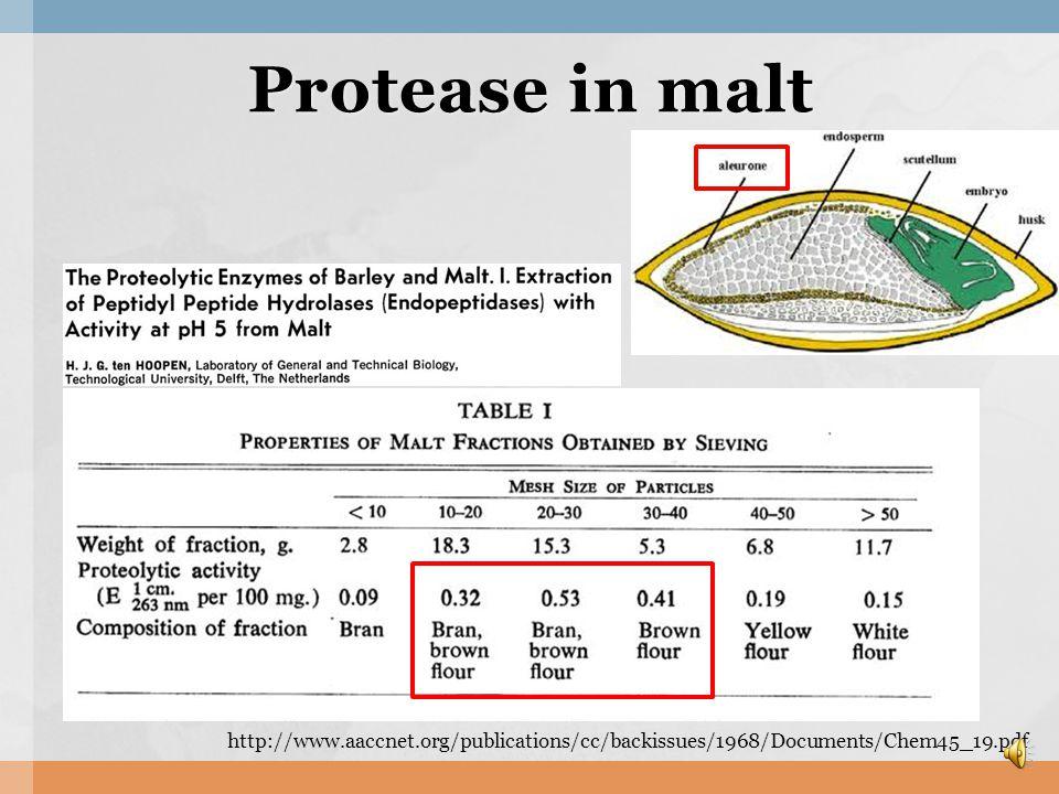 Amylase in Malt α-amylase (Liquefying amylase) β-amylase (Saccharifying enzyme)