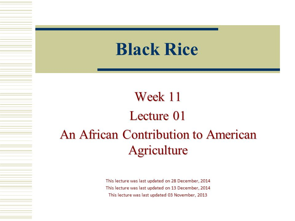 Black Rice Week 11 Lecture 01 An African Contribution to American Agriculture This lecture was last updated on 28 December, 2014 This lecture was last updated on 13 December, 2014 This lecture was last updated 03 November, 2013