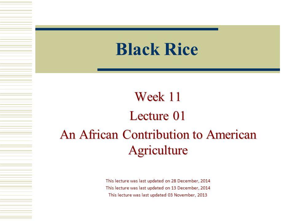 21Week 11 Africa 3 Rice