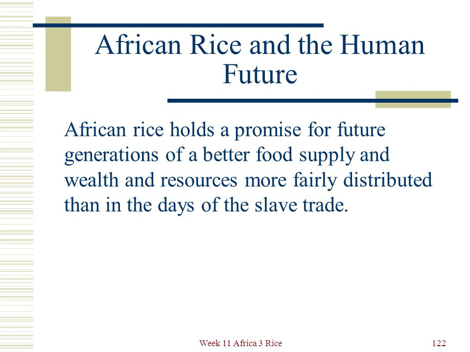 African Rice and the Human Future Despite its distant origin both in time and geography from Oryza sativa, the two can be crossbred to produce hybrids with numerous possibilities in terms of output, disease resistance, timing, and other important qualities.