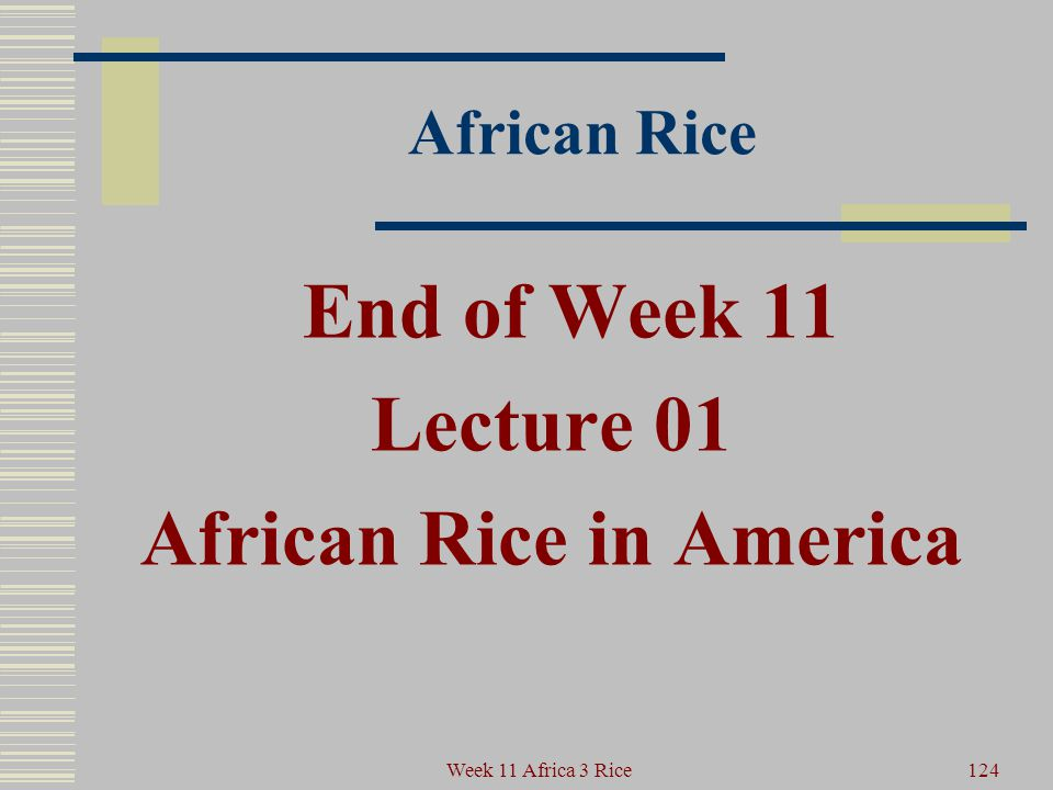 African Rice It can be part of a better future for all peoples. 123Week 11 Africa 3 Rice