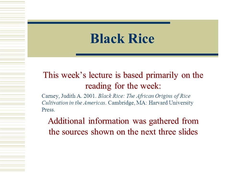 Floodplain and Coastal Rice During the slave era in Georgia and South Carolina, floodplain and coastal rice plantations arose.