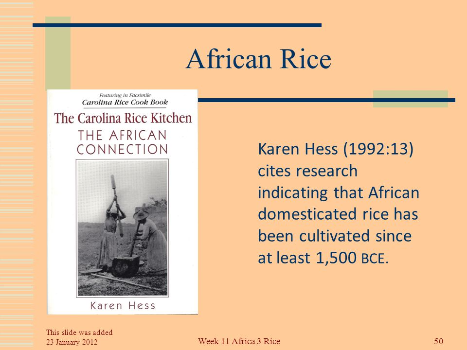 African Rice Thus, it now appears that of the 20 species of rice that grow wild on earth, two were domesticated: Oryza sativa in Asia 7,000 years ago, and Oryza glaberrima in West Africa, date unknown 49Week 11 Africa 3 Rice