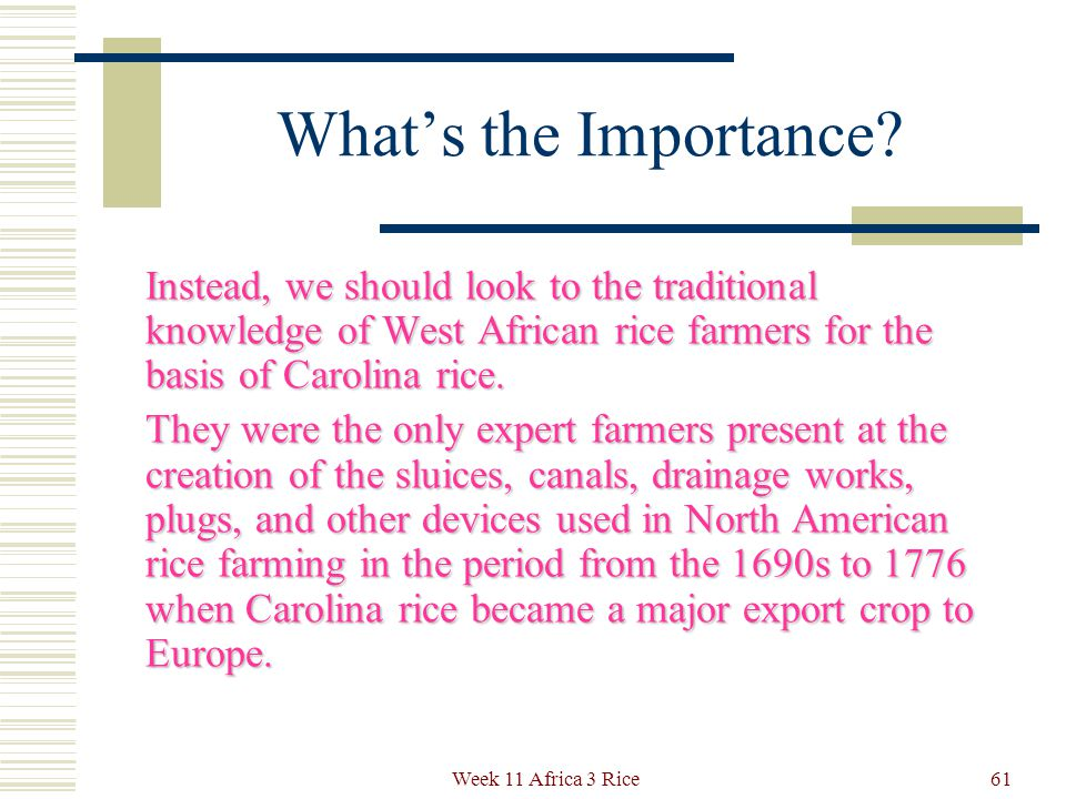 What's the Importance. The Europeans of the time had no knowledge of irrigated rice agriculture.