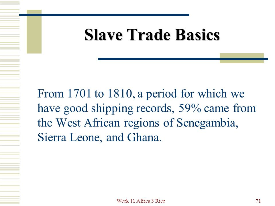 Slave Trade Basics The slaves were brought to – North America 7% (USA 5%) North America 7% (USA 5%) The Caribbean 42% The Caribbean 42% South America 49% South America 49% 70Week 11 Africa 3 Rice