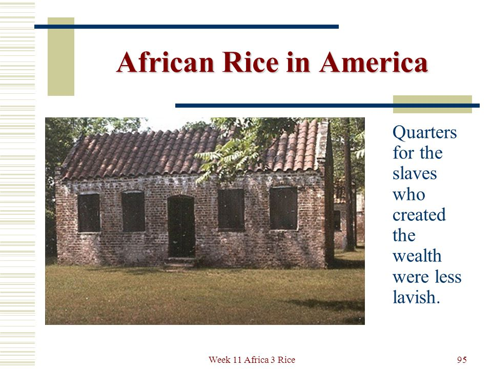 African Rice in America On the Boone Plantation in South Carolina, tourists view the splendid accumulations of classic art and furniture of the former slave- owning Southern families.
