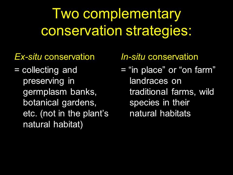 Two complementary conservation strategies: Ex-situ conservation = collecting and preserving in germplasm banks, botanical gardens, etc. (not in the pl