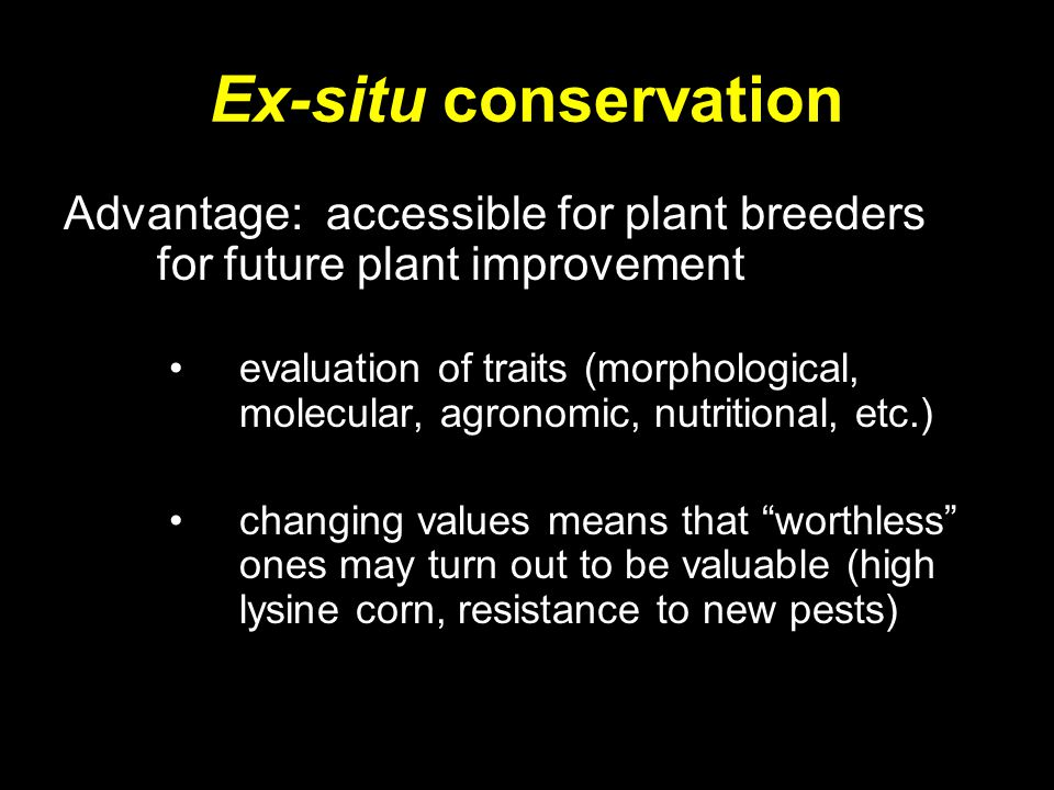 Ex-situ conservation Advantage: accessible for plant breeders for future plant improvement evaluation of traits (morphological, molecular, agronomic,