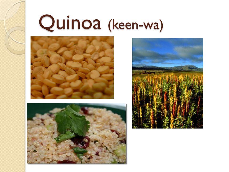 Quinoa (keen-wa)