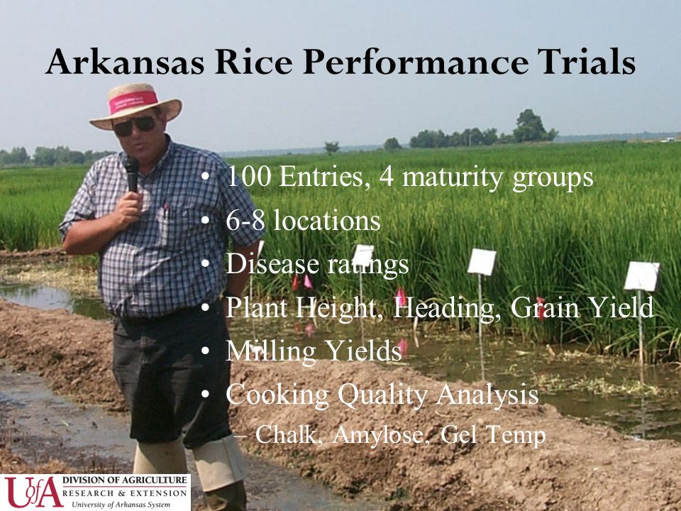 Arkansas Rice Performance Trials 100 Entries, 4 maturity groups 6-8 locations Disease ratings Plant Height, Heading, Grain Yield Milling Yields Cooking Quality Analysis –Chalk, Amylose, Gel Temp