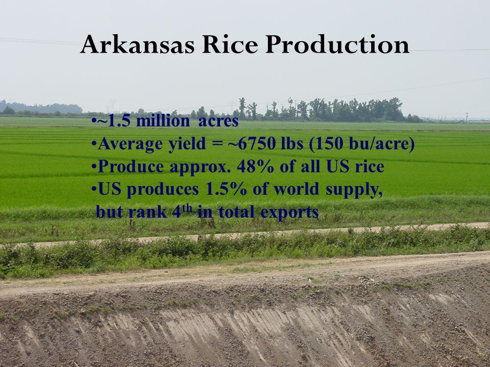 Overview of Arkansas Rice Variety Testing Uniform Regional Rice Nursery Arkansas Rice Performance Trials On-farm variety testing (Disease Monitoring Program) Rice DD50 Program Variety X Nitrogen Trials