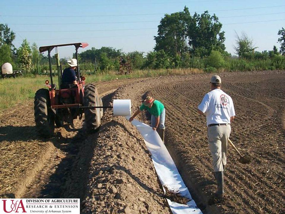 Rice V X N Studies 3-4 locations annually –RREC, Pine Tree, NEREC, SEREC 3 years All new cultivars 6 N rates